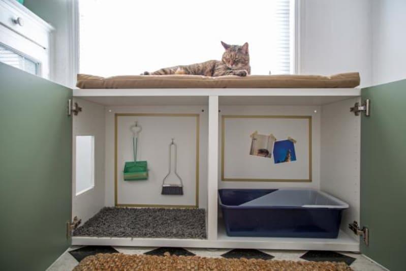 CUSTOMIZE YOUR CAT'S BOX